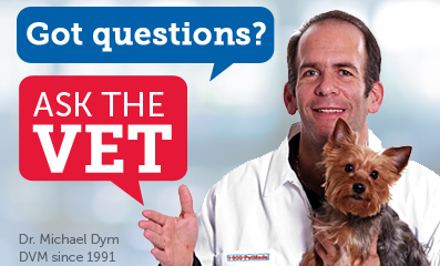 Have a pet health question you need answered? Our vet team is here to help!