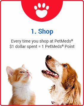 1. Shop