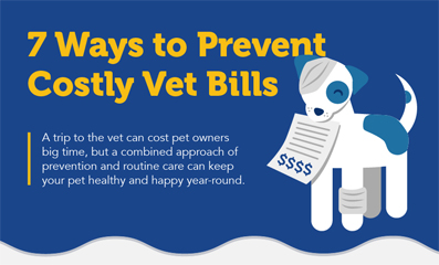 Veterinary care can add up quickly! Check out this handy infographic with tips to help prevent costly vet visits and improve your pet's quality of life