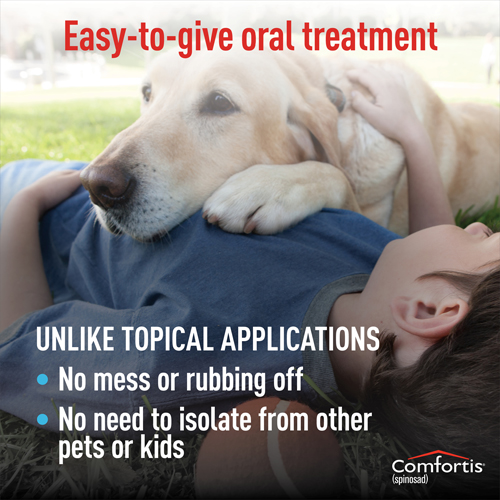 Comfortis is an easy-to-give oral treatment that doesn't make a mess